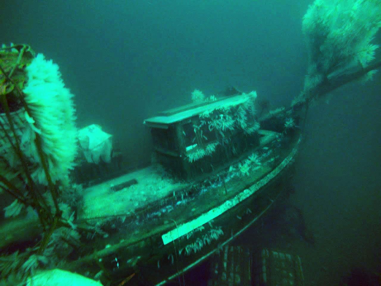 NYE BILDER: Her er det siste bildet en 2211-tipser har tatt fra havbunnen utenfor Norheimsund. De siste fem årene har «Con Amore» vært i Joar Førdes eie. Han er også kjent som kompanjongen til Lothepus i Fjorden Cowboys.