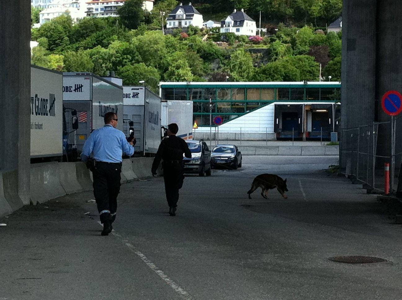 HUNDEJAKT: Politiet søker med hund på Nygårdstangen.