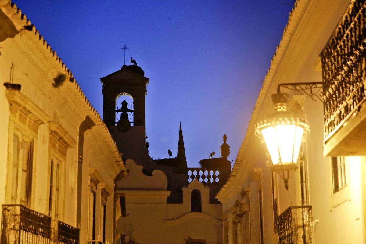 SE OPP: Faro har en stor bestand av storker. De har lagt store reder ved det flotte inngangspartiet til gamlebyen og på de høyeste bygningene innenfor bymurene. Så husk å se opp – så får du nytt synet av de majestetiske fuglene.