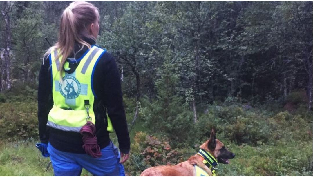 LETER I BRATT TERRENG: Hundefører Lisbeth Ludvigsen  med redningshunden Kylling har deltatt i søket etter den savnede kvinnen.