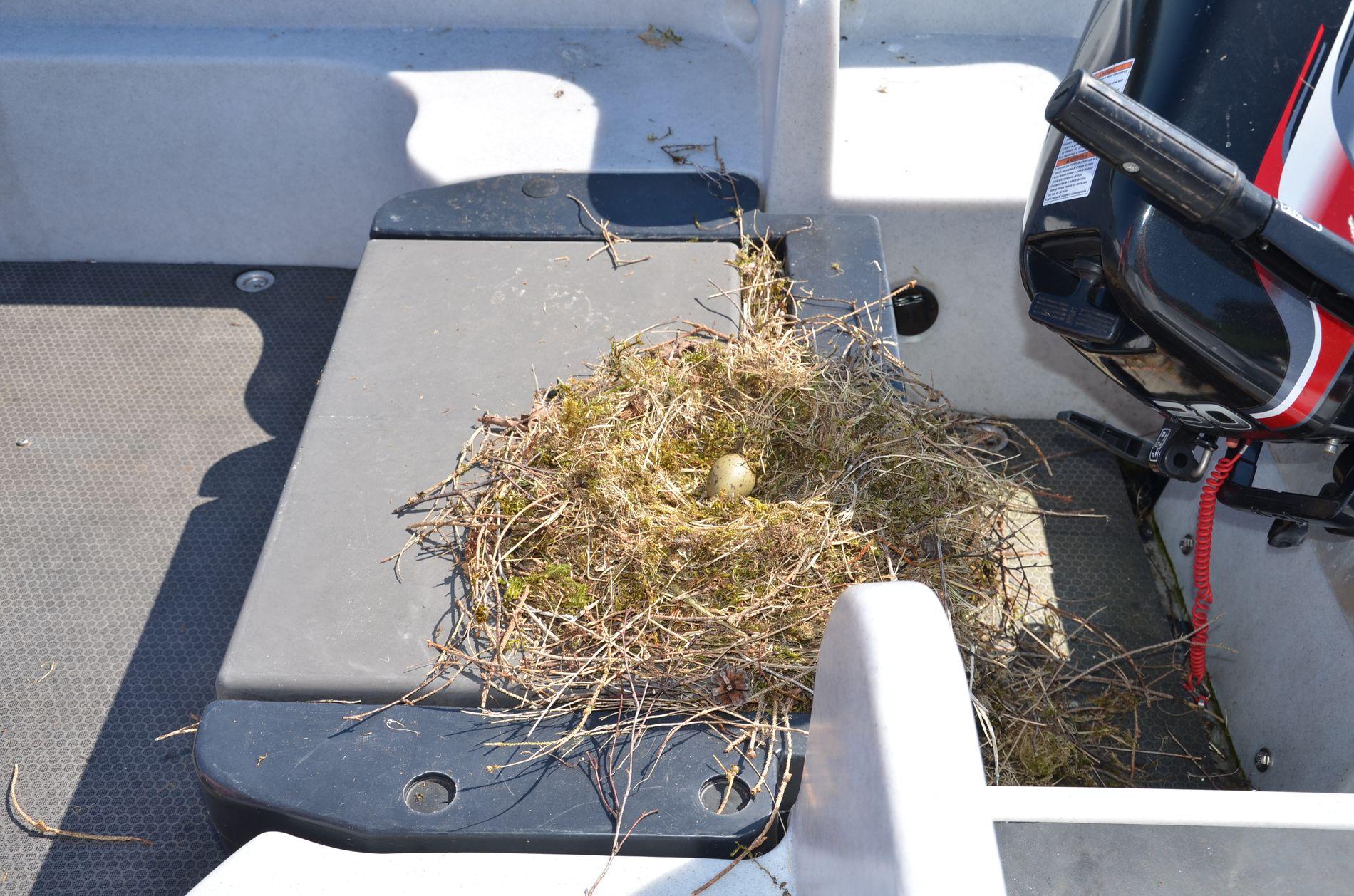 REIRET: Her er reiret som setter en stopper for familien Laurantsens bruk av båten.