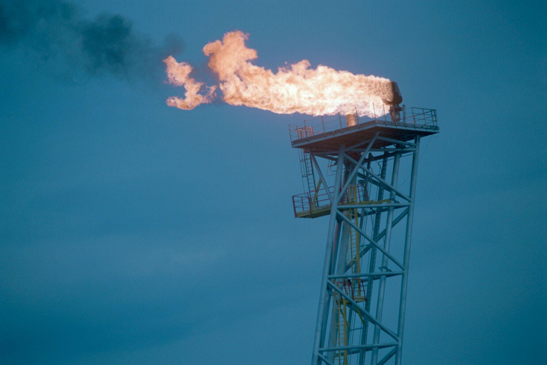 KLIMAVERSTING:  Olje- og gassektoren er selve «elefanten i rommet», og den vil hele tiden påse at ingen politikere beslutter noe som går utover denne sektoren, skriver Johan L. Olsen.