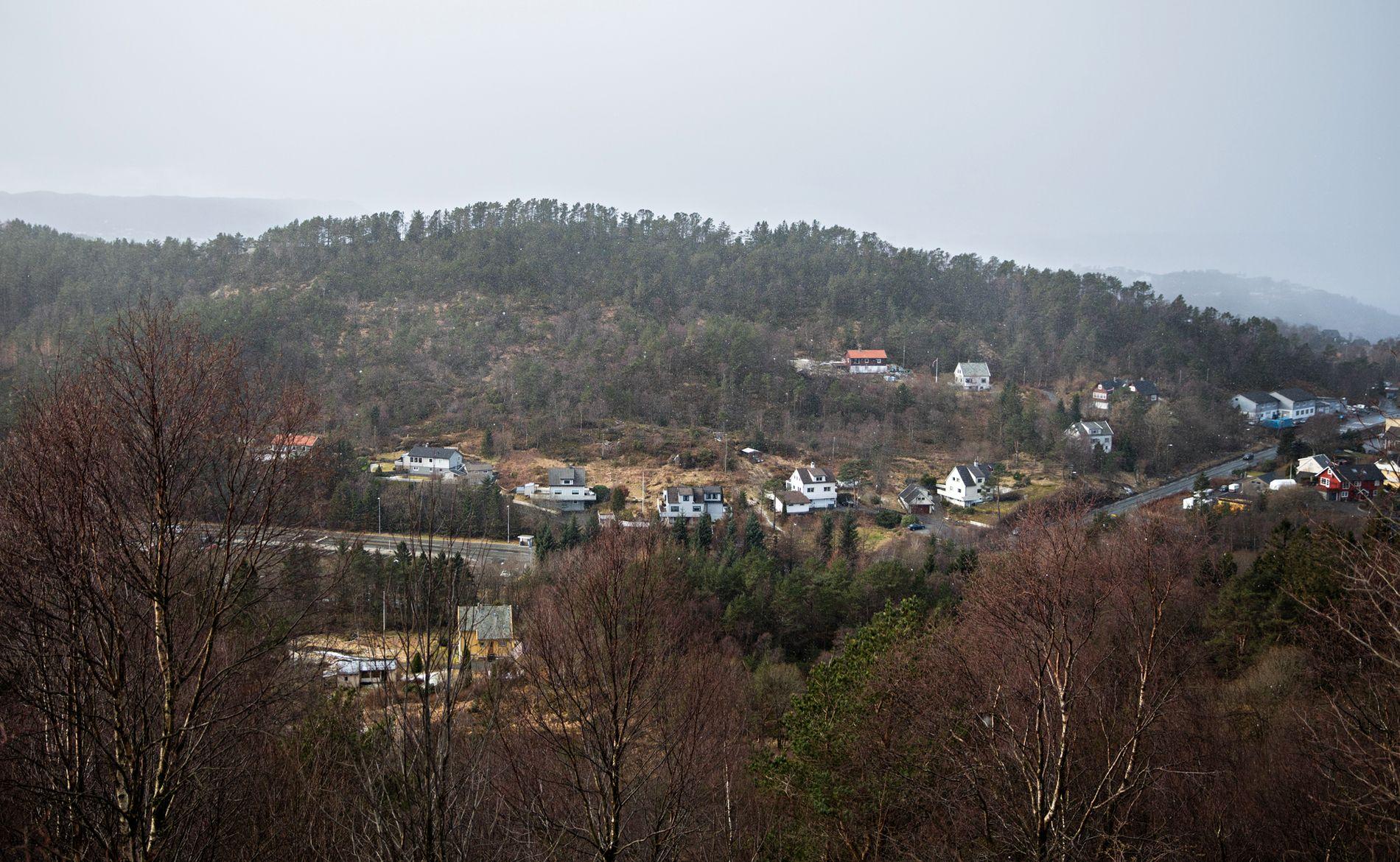 BYGGELAND KUTTES: I forslaget til ny arealplan (KPA) for Bergen, som byrådet snart skal vedta, foreslås det å gjøre 7000 mål med byggeland om til landbruks-, natur- og friluftsområde. Blant annet på grunn av insekter. Her er området Harafjellet hvor det er snakk om utbygginger.