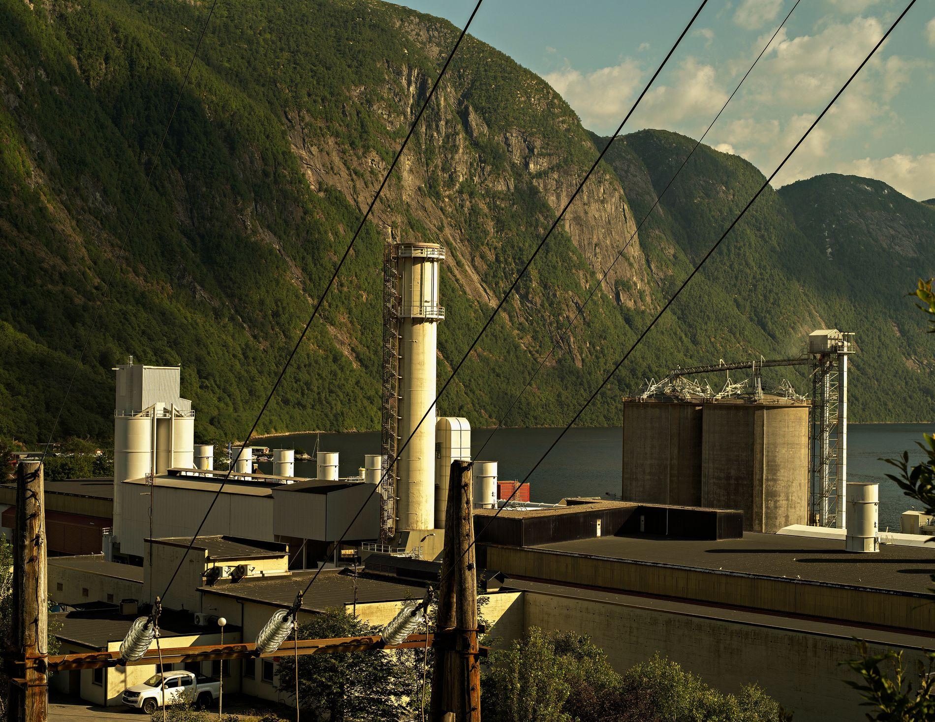 LINJE TIL VERDA: «Brureslørfossane bygde Høyanger, den rørsla vart til eld i fabrikken, vart til aluminium i store bolkar, vart ei linje til verda.»