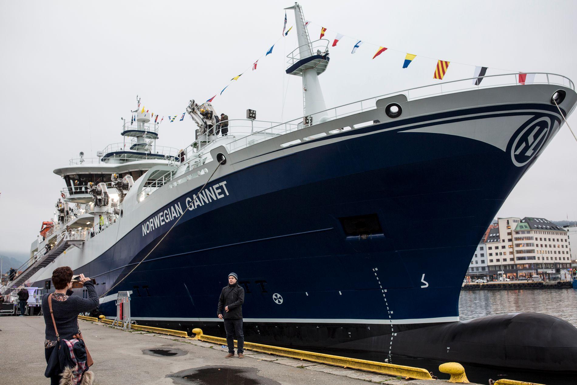 NYVINNING: Skipet «Norwegian Gannet» er bra for dyrevelferd, klimaet og effektiviteten i norsk oppdrettsbransje. Men for norske brønnbåtar og lakseslakteri er han dårleg nytt. Difor møter han no kraftig motstand, òg frå regjeringa, skriv BT-kommentator Hans K. Mjelva.