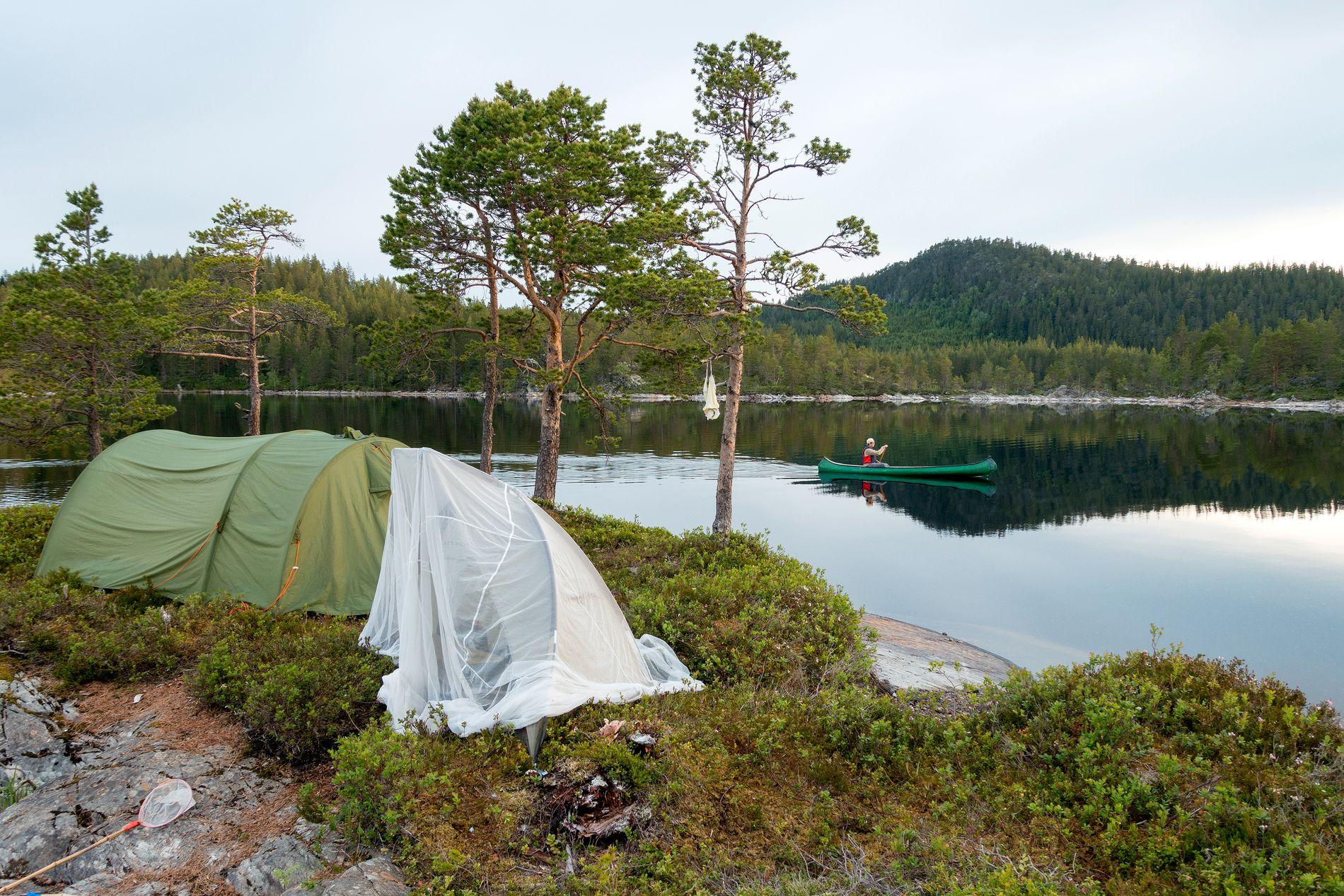 TELTTUR: I sommer skal det soves i telt.