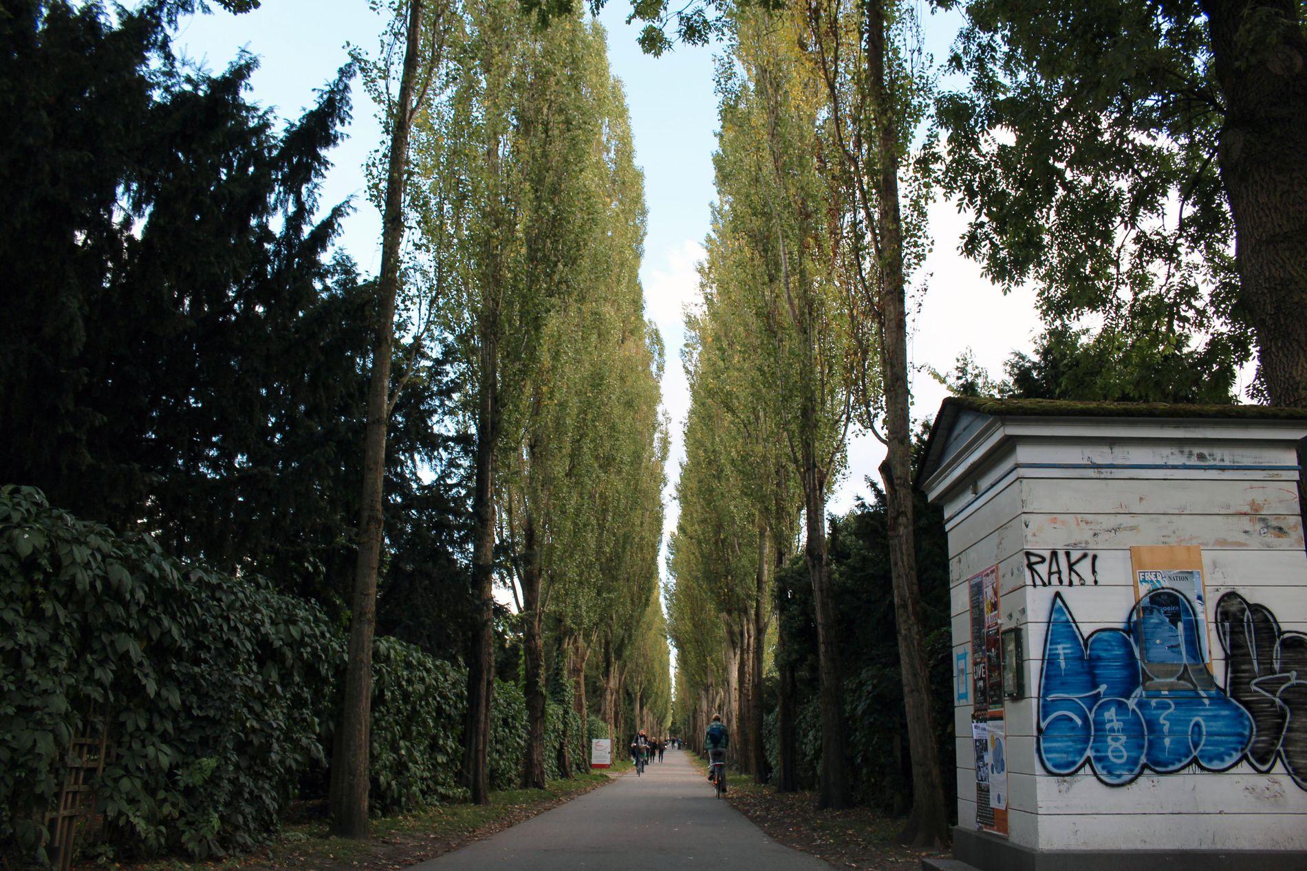 KIRKEGÅRD: Assistens kirkegård ligger i Nørrebro og brukes av københavnere daglig. Den ble tatt i bruk på midten av 1700-tallet og brukes i dag som rekreasjonsområde for turgåere og syklister. En rekke kjente personer er gravlagt her, blant dem H.C. Andersen.