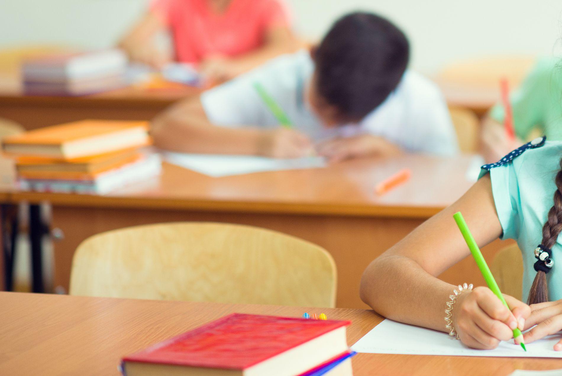LANGSIKTIG STRATEGI: For å redusere fravær og forebygge frafall, må skolene og kommunene utvikle langsiktige, forebyggende og systematiske strategier, der et trygt og inkluderende læringsmiljø prioriteres, skriver Trude Havik.