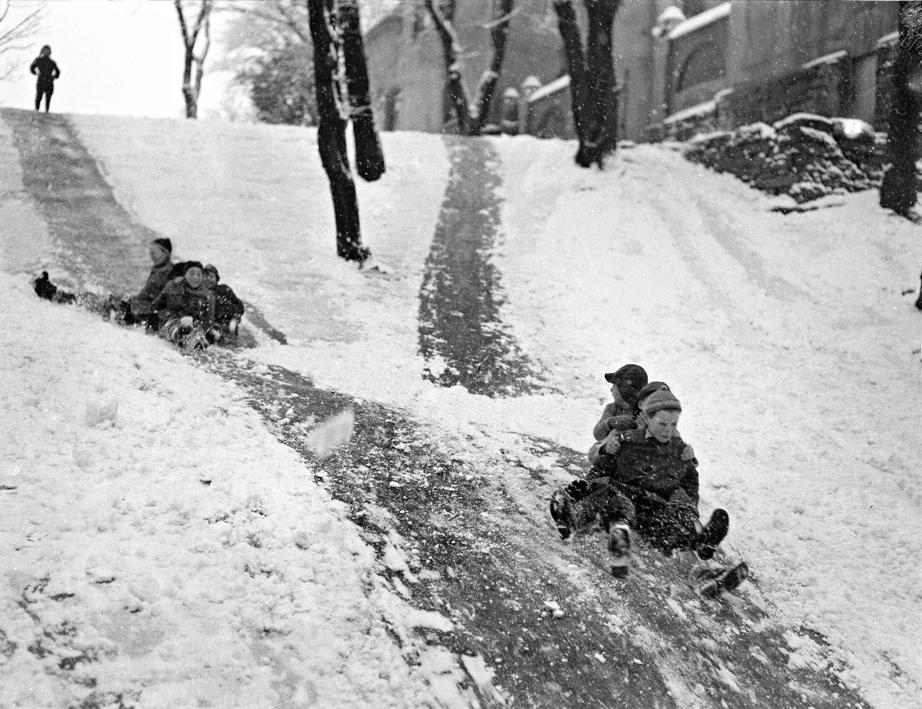 PÅ NORDNES: Det akes friskt i Nordnesparken i januar 1951.