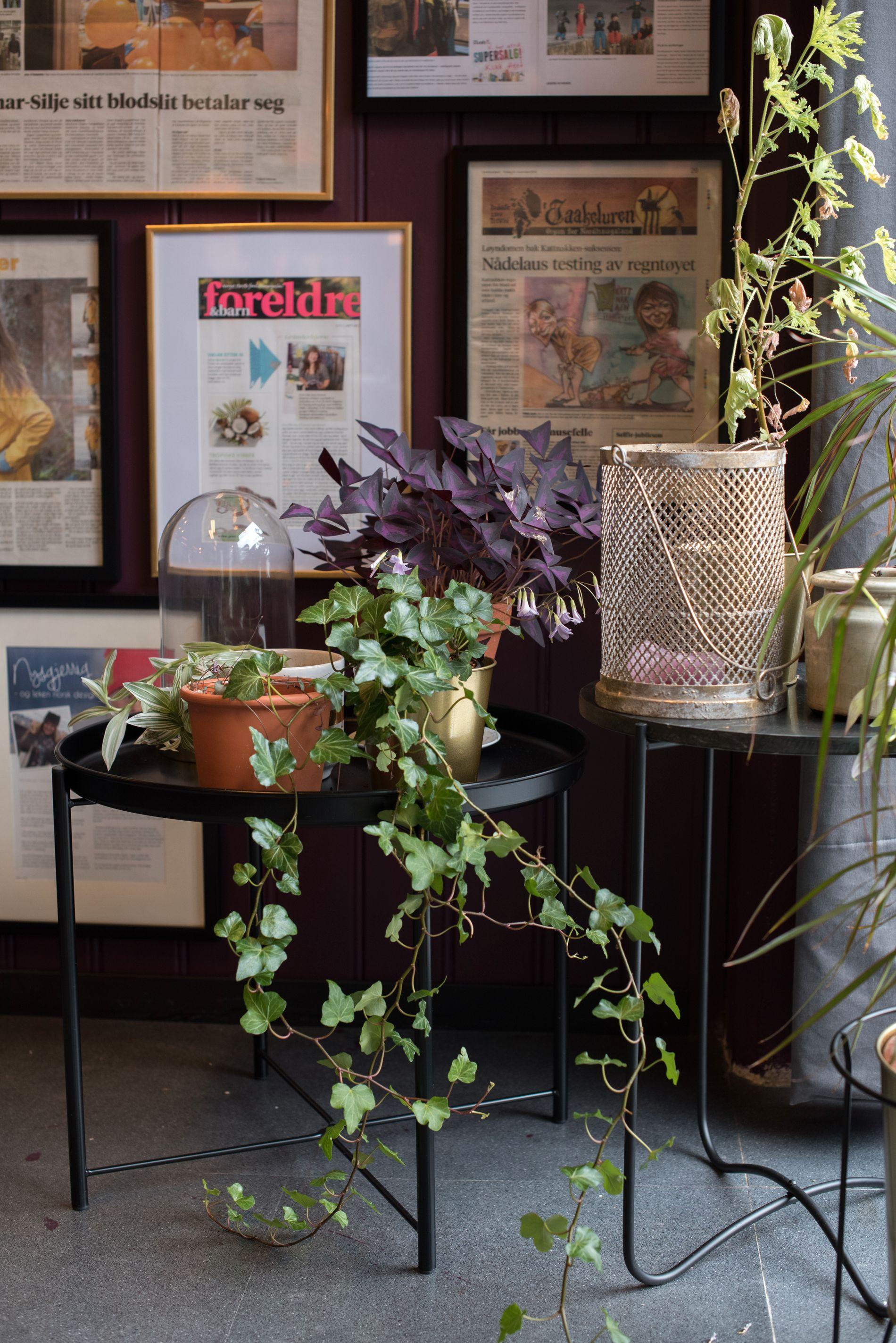 Blomster og lys er fast inventar på jobben.
