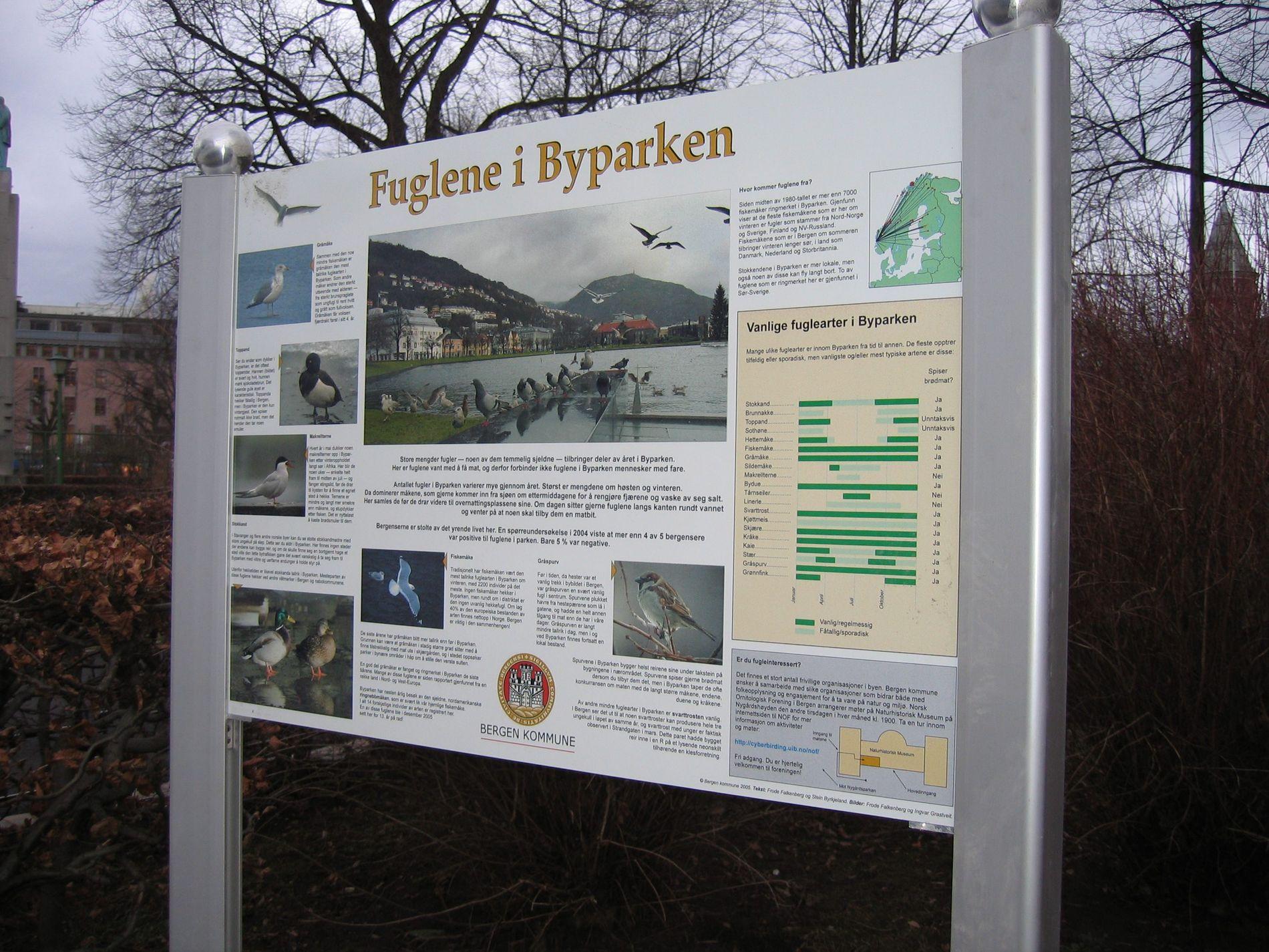 ac3431aa Miljøsjef og fuglevenn - Bergens Tidende