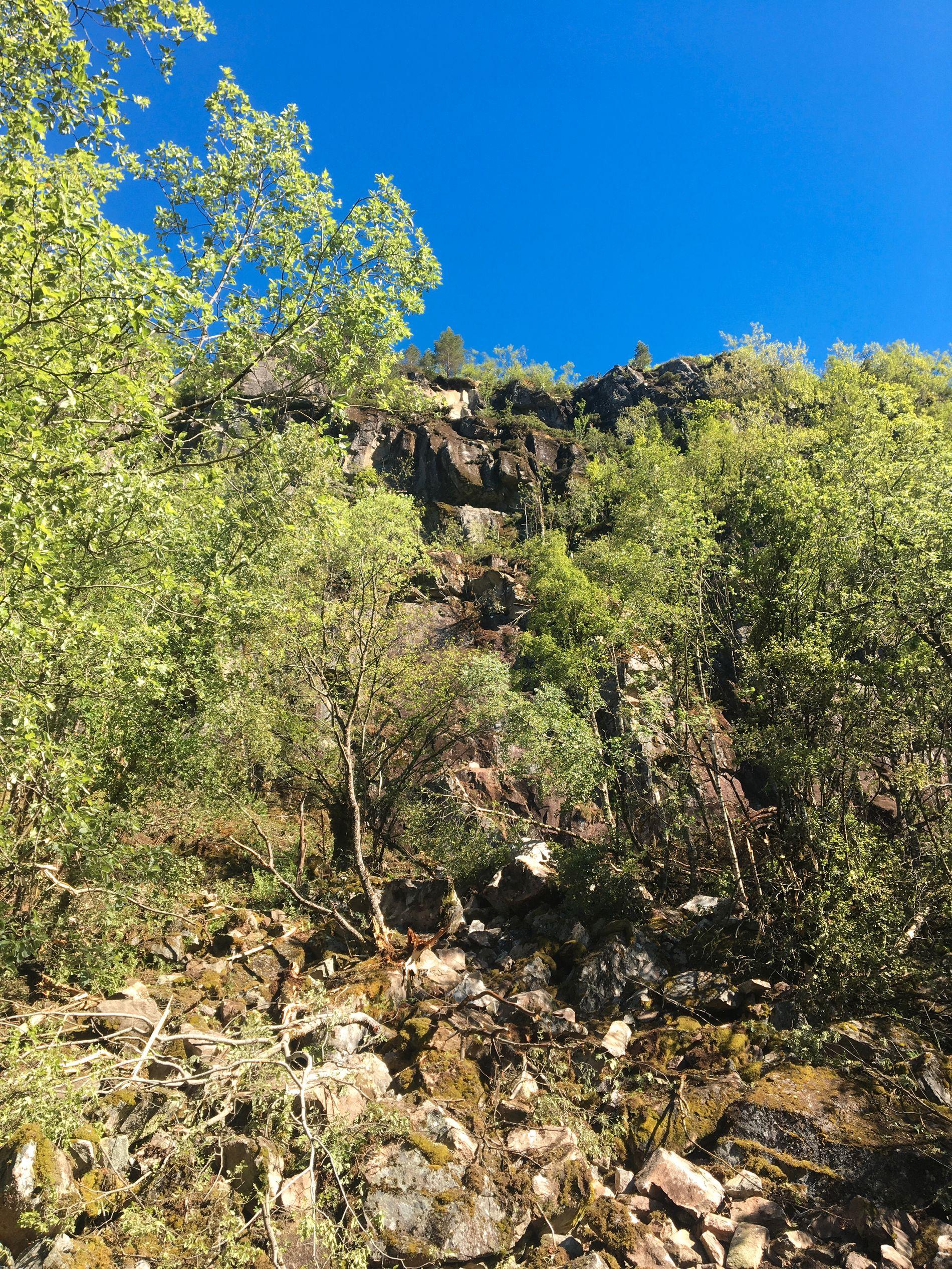 HER LØSNET DET: Skredet begynte 75 meter oppe i fjellsiden.
