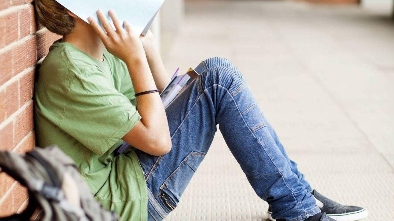 VITNEMÅL: Hvor er «hyllesten» av dem som i frustrasjon har felt tårer over mattepensum, men med iherdighet og innsats har «karret» til seg en 3'er, spør innsender.
