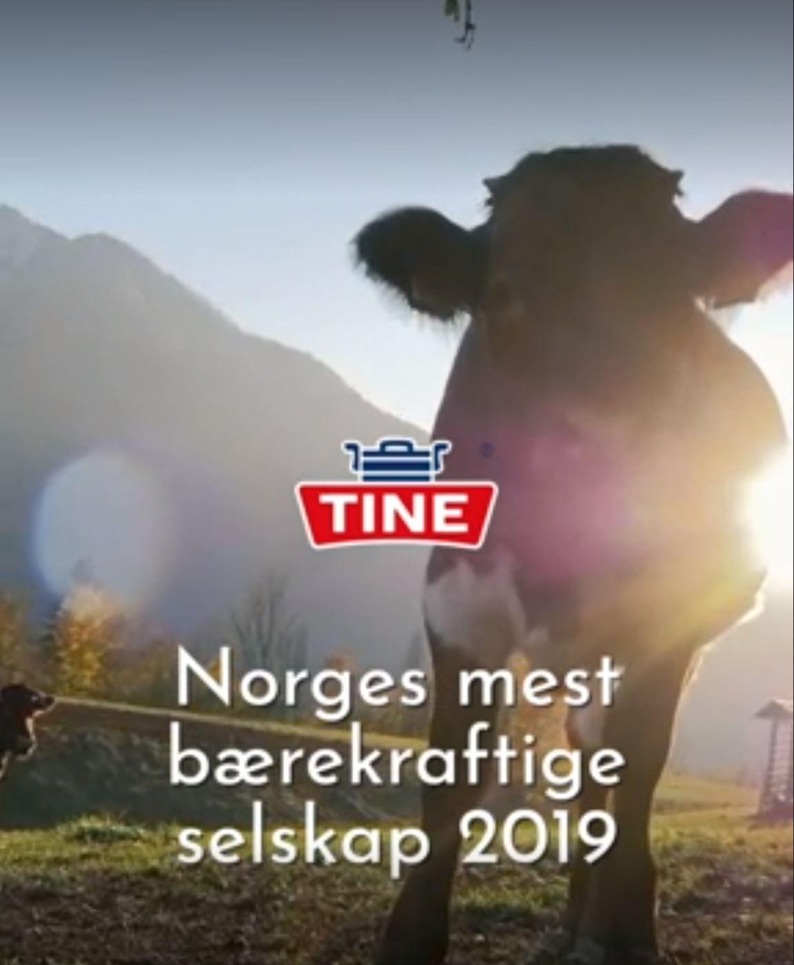 VILLEIANDE: Meierigiganten Tine fekk kritikk frå Forbrukartilsynet for villeiande marknadsføring for denne reklama.