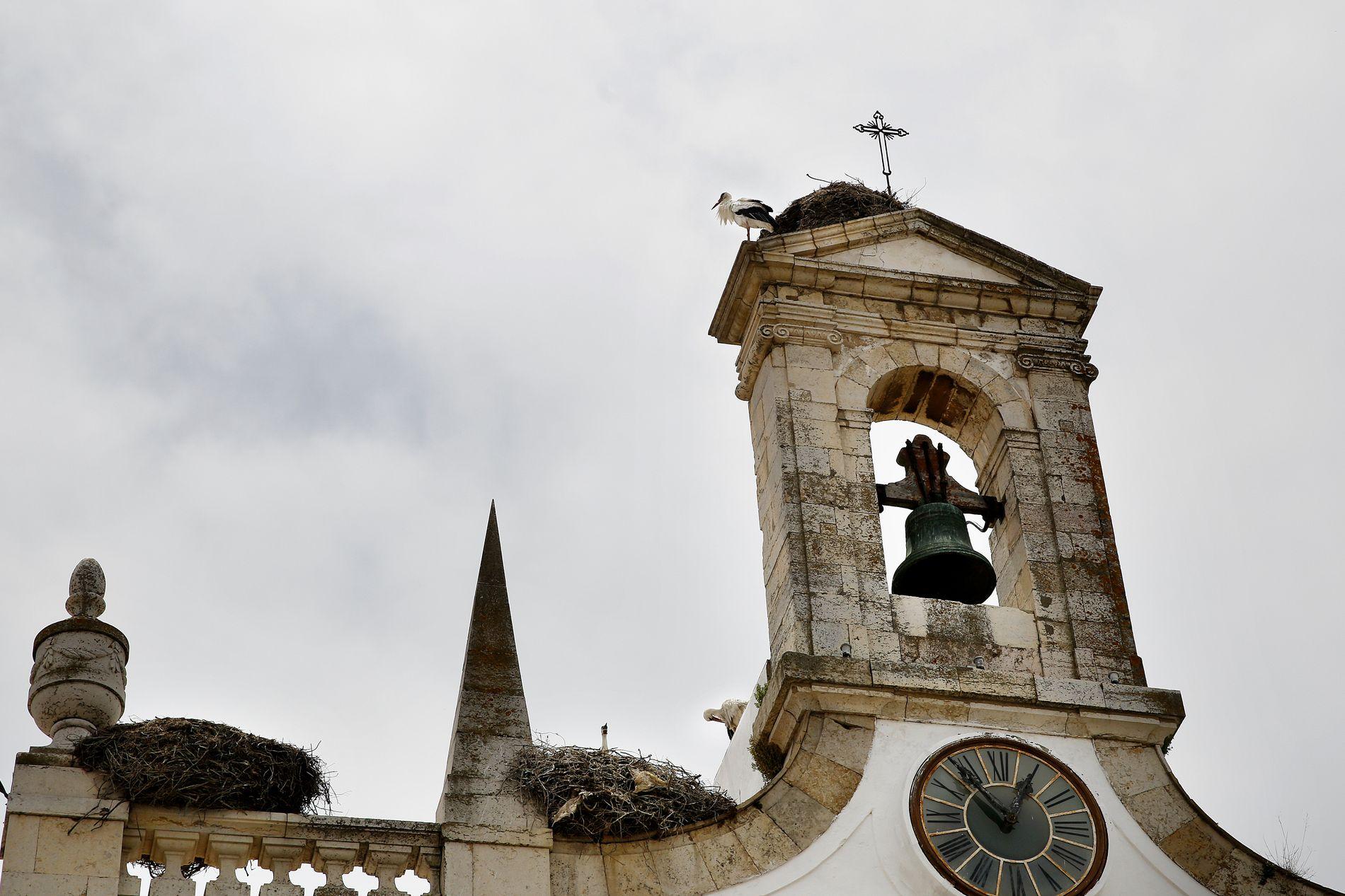 FARO: Faro er gjerne en by en bare stopper innom - siden flyplassen ligger her. Men den er undervurdert som reisemål. Stikk innom gamlebyens restauranter og husk å se opp: Her bor storkene.