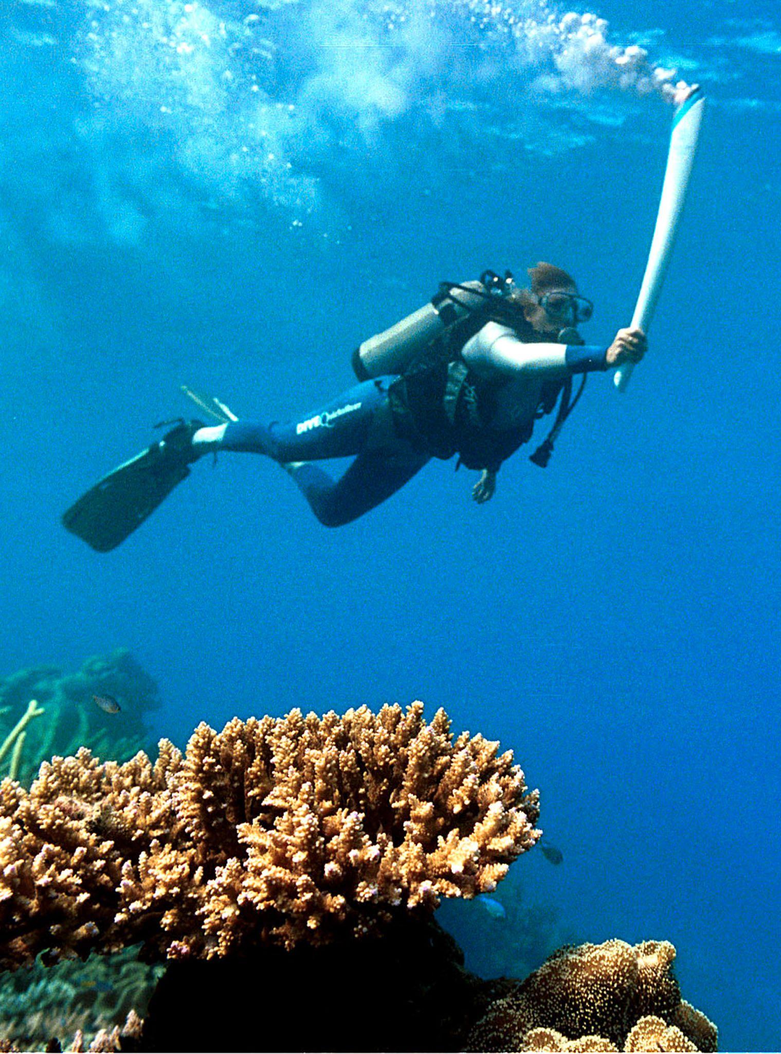 Det er ein objektiv samanheng mellom tenningsnøkkelen i vår eigen bil og øydelegginga av Great Barrier Reef – korallrevet utanfor Australia som er noko av det vakraste som finst, men som vert skada og døyr når vatnet vert varmare på grunn av klimaendringane, skriv Bård Vegar Solhjell.