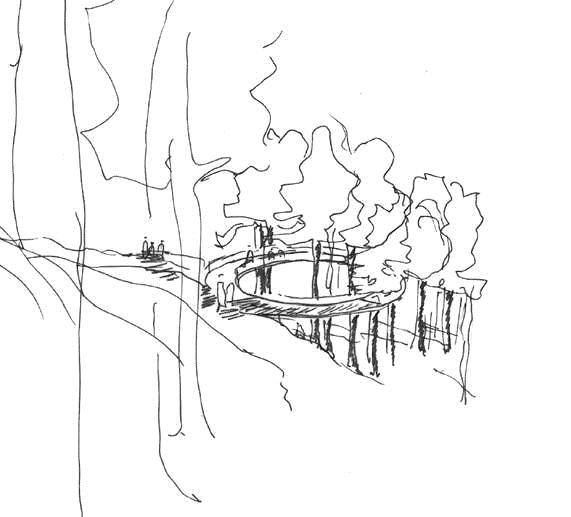 TRETOPPEN: En av de mange opplevelsene langs stien blir en plattform der en kan gå ut og vandre mellom tretoppene