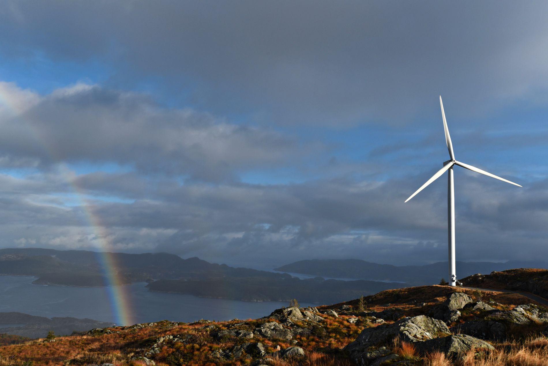 DÅRLIG UTSIKT: Å si nei til vindkraft betyr ikke at en redder naturen. Uten lavere utslipp, vil naturen lide. På de frie fjellviddene vil en kanskje ikke se ut over Norges tak, men inn i krattskog, skriver innsender.