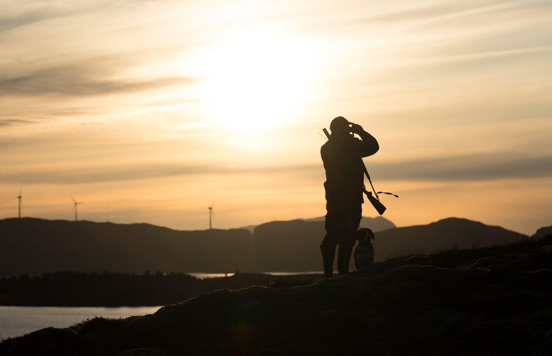 VAKKERT: Høsten og lyset langs kysten av Midt-Norge er spesielt vakkert. For jegere kan det kombineres med god rådyrjakt.